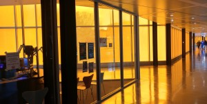 McCormick Tribune Campus Center (Rem Koolhaas)